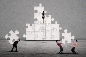 optimized organization
