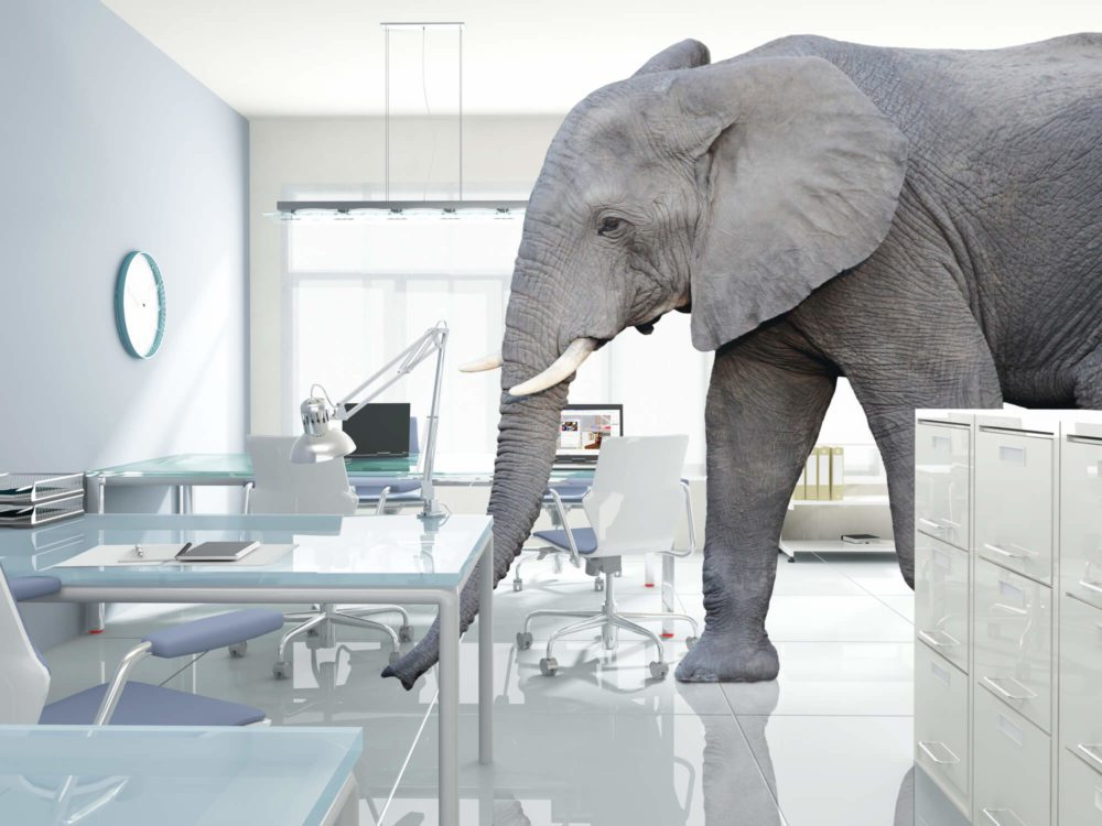 elephant in the room, VUCA, Ira S Wolfe